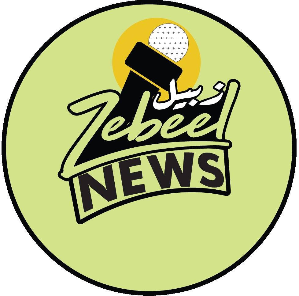 Zebeel News Logo
