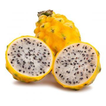 فاكهة تنين صفراء