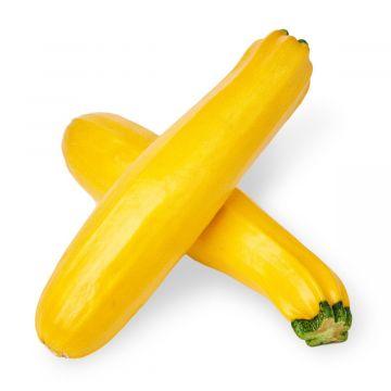 كوسا صفراء